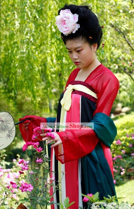 Chinese Ancient Tang Dynasty Lady Costume