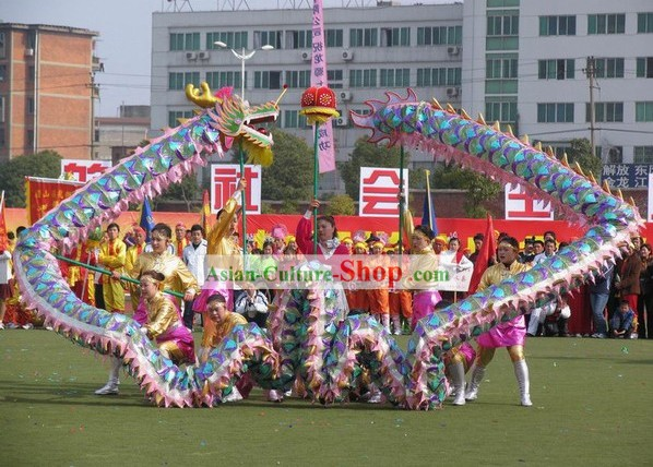 Compettion and Parade Hand Made Net Dragon Dance Costume for Women