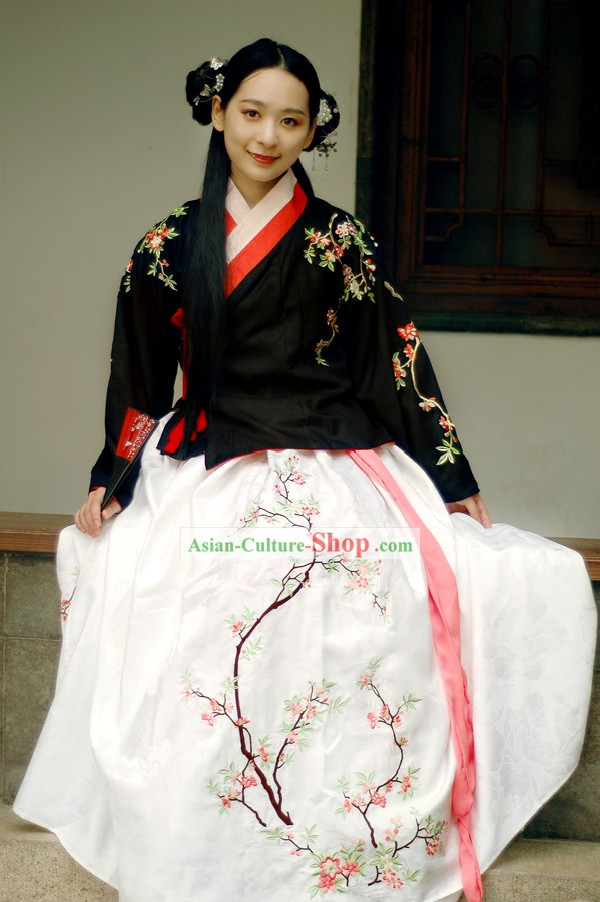 Traditional Ming Dynasty Embroidered Hanfu Clothing for Women