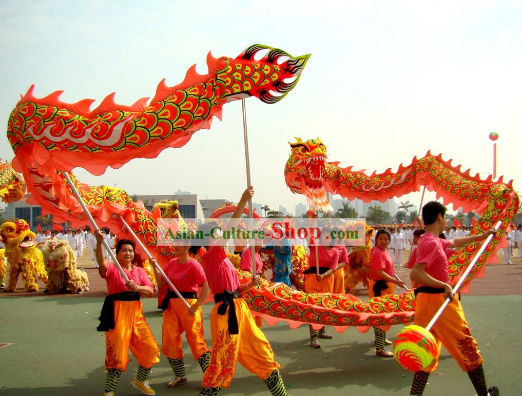 Competition and Performance Luminous Dragon Dance Costumes Complete Set