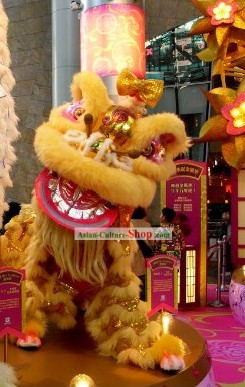 Display and Collection Handmade Lion Dance Costume Complete Set