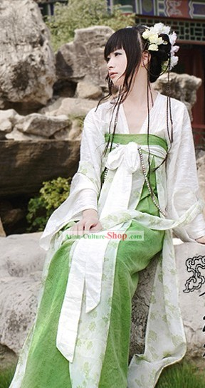 Ancient Chinese Tang Dynasty Girl Ruqun Clothing