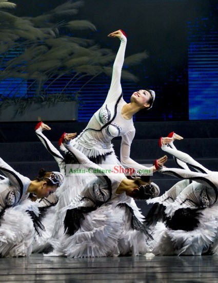 Chinese Swan Dance Costume Complete Set for Women