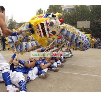 Chinese Peking Blue Dragon Dance Costumes Complete Set