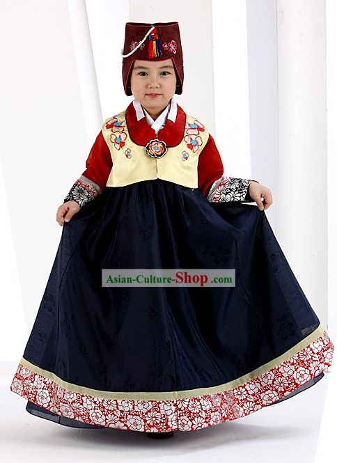 Traditional South Korean Formal Birday Hanbok Dress for Girls