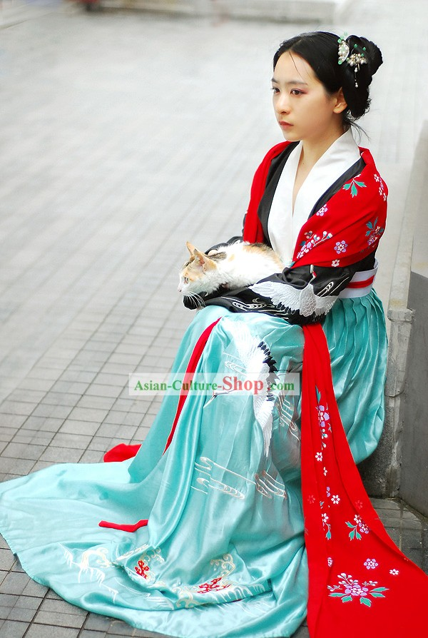 Chinese Tang Princess Embroidered Crane Clothing Complete Set