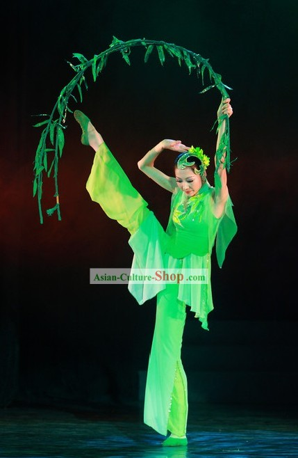 Green Willow Leaf Dance Costume