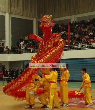 Shinning Red Dragon Dance Costume Complete Set
