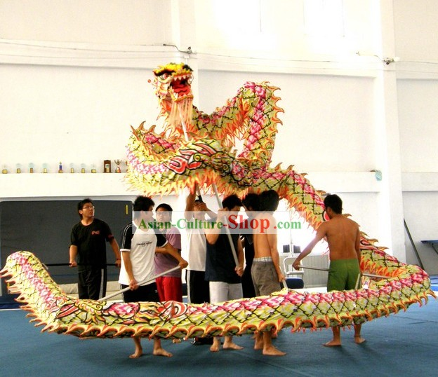Traditional Luminous Dragon Dance Costume Complete Set