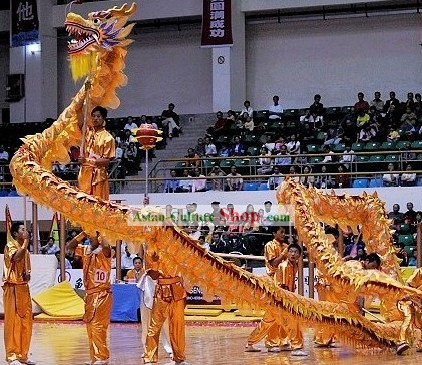 Traditional Golden Net Dragon Dance Costume Complete Set