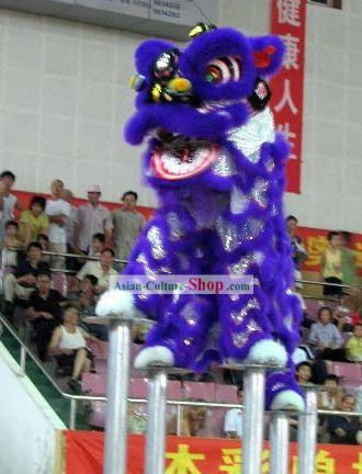 Competition and Celebration Long Wool Lion Dancing Costumes Complete Set