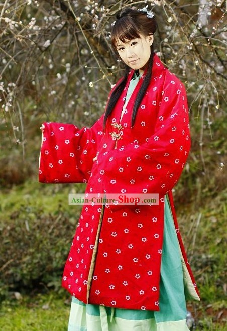 Traditional Song Dynasty Zhe Zi Hanfu Clothing for Women