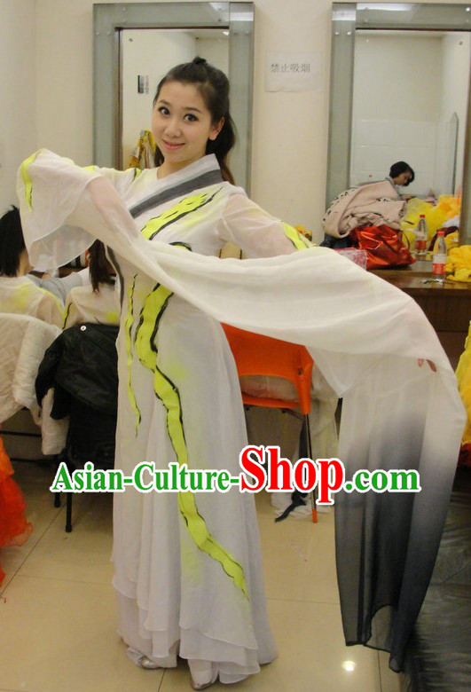 Traditional Chinese Classical Long Sleeve Dance Costumes for Women