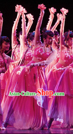 Stage Performance Chinese Classical Peach Blossom Dance Costumes and Headwear for Women