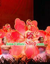 Chinese Flower Dance Costume and Headpiece Complete Set