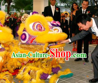 Wish You a Happy New Year Supreme Lion Dance Costumes Complete Set