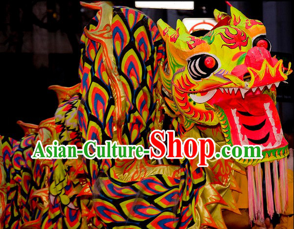 Parade Celebration Professional Dragon Dance Costume for 9-10 People