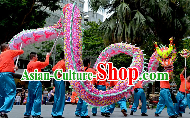 College Illuminated Dragon Dance Costume for 9-10 Students