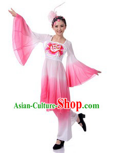 Traditional Chinese Group Classical Dance Costume and Hair Accessories for Women