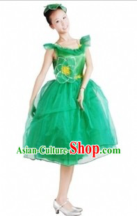 Traditional Chinese Green Leaf Dance Cotumes and Headdress for Women