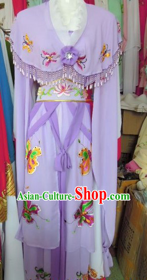 Ancient Chinese Purple Butterfly Robe for Women