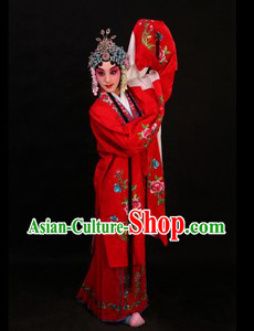 Peking Opera Hua Dan Long Sleeve Costumes and Skirt for Women