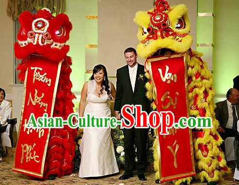 Chinese lunar new year lion dance costumes
