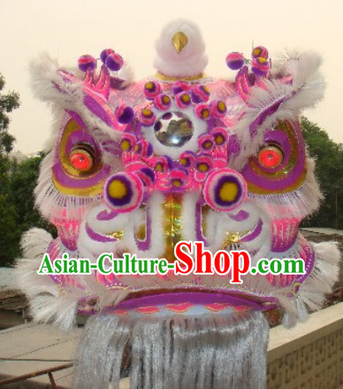 Top Chinese Lion Costume