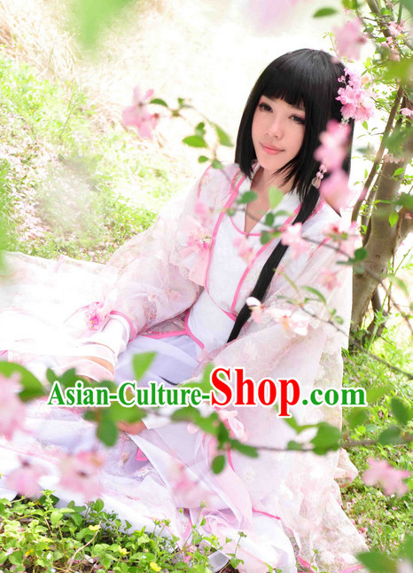 Chinese Ancient Princess Costumes and Hair Jewelry Complete Set