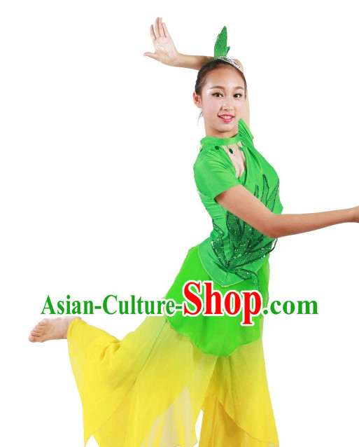 Professional Chinese Stage Dance Costumes Carnival Costumes China Shop Costume for Women