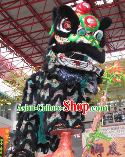 lion dance lion dance music lion dance video the lion dance lion dancing dragon dance costume dragon dance dragon dance costumes dragon dance chinese dragon dance