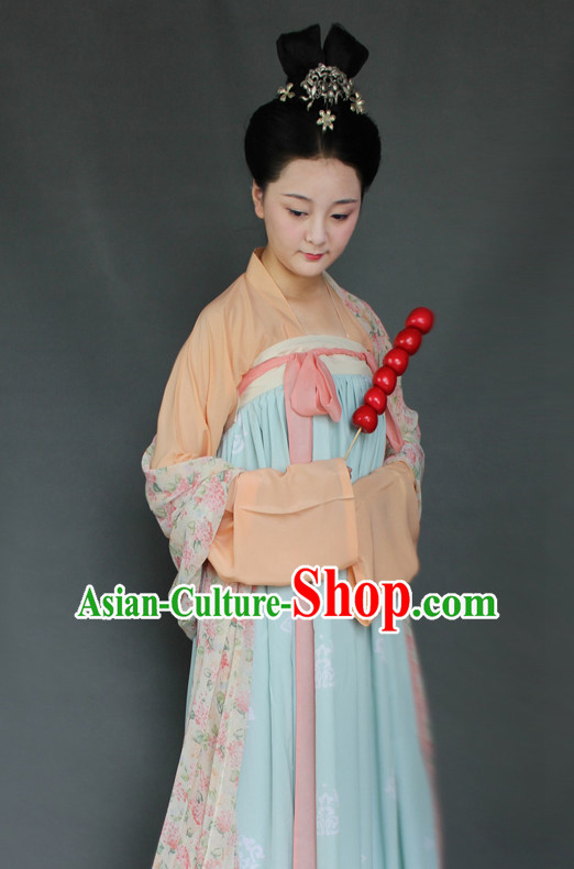 Chinese Tang Robe Hanfu Designer Dresses Plus Size Costumes for Women