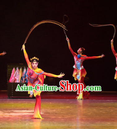 Chinese Opera Stage Dancewear Costumes and Hair Accessories Complete Set for Women