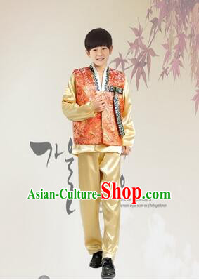 Korean Dress for Boys Teenagers Clothes Stage Costume Formal Dress Full Attire Show Blue