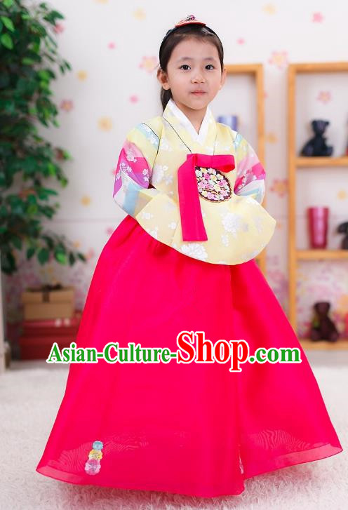 Traditional Korean Handmade Formal Occasions Costume Embroidered Baby Brithday Hanbok Blouse and Pink Dress Clothing for Girls