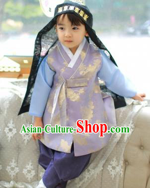 Asian Korean National Traditional Handmade Formal Occasions Boys Embroidery Lilac Hanbok Costume Complete Set for Kids