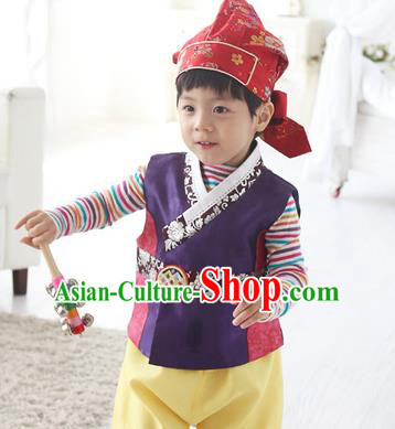 Traditional Korean Handmade Hanbok Embroidered Purple Costume, Asian Korean Apparel Hanbok Embroidery Clothing for Boys