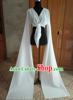 Traditional Chinese Long Sleeve Wide Water Sleeve Dance Suit China Folk Dance Koshibo Long White Ribbon for Women
