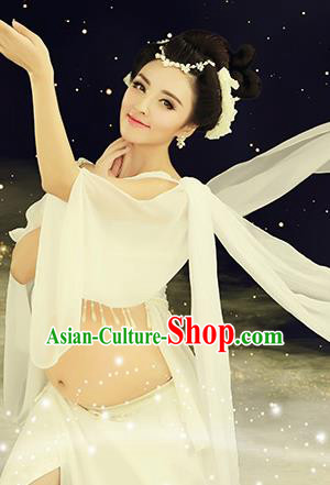 Traditional Ancient Chinese Dunhuang Flying Fairy Costume, Chinese Tang Dynasty Dance Ribbon Dress, Cosplay Chinese Peri Imperial Empress Clothing for Pregnant Women