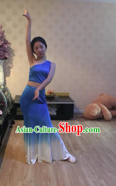 Traditional Chinese Dai Nationality Peacock Dancing Costume, Folk Dance Ethnic Fishtail Dress, Chinese Minority Nationality Dancing Blue Clothing for Women
