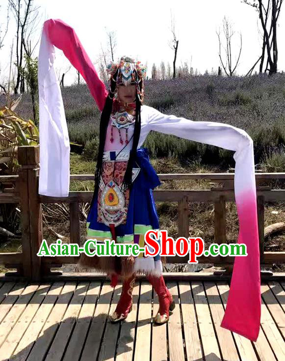 Traditional Chinese Zang Nationality Dancing Costume, Tibetan Female Folk Dance Ethnic Water Sleeve Pleated Skirt, Chinese Tibetan Minority Nationality Embroidery Costume for Women
