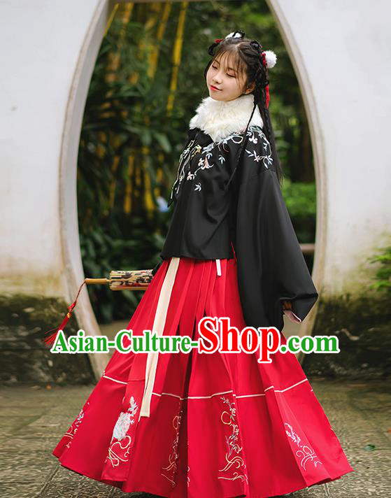 Traditional Chinese Ming Dynasty Young Lady Costume, Elegant Hanfu Clothing Embroidered Horse-face Skirt, Chinese Ancient Princess Clothing for Women