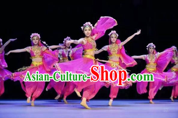 Traditional Chinese Mongol Nationality Dancing Costume, Mongols Female Folk Indian Dance Clothing, Chinese Belly Dance Embroidery Rosy Costume for Women