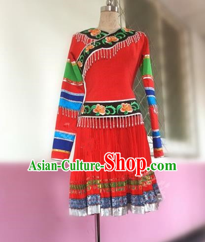 Traditional Chinese Yi Nationality Dancing Costume Female Folk Dance Ethnic Pleated Skirt, Chinese Minority Nationality Embroidery Dress for Women