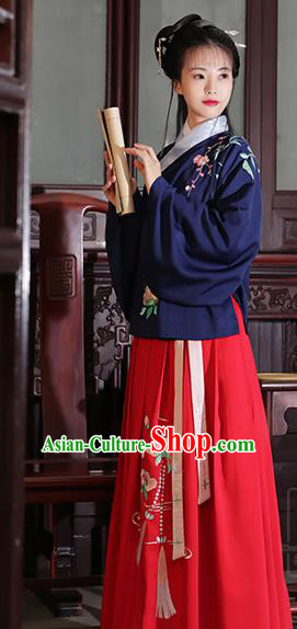 Asian Chinese Ming Dynasty Young Lady Costume Embroidery Blue Blouse and Slip Skirt, Traditional China Ancient Embroidered Clothing for Women