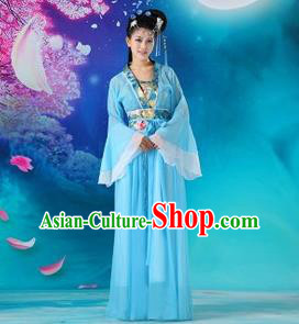Traditional Ancient Chinese Palace Lady Fairy Costume, Asian Chinese Tang Dynasty Princess Embroidered Blue Dress Clothing for Women
