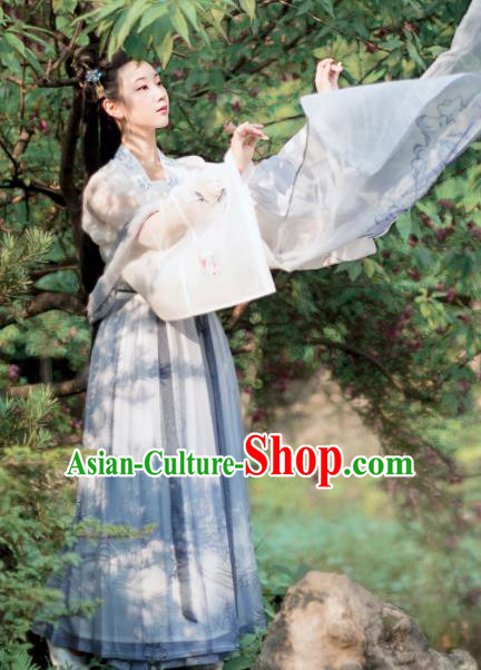 Chinese Ancient Princess Embroidered Costumes Traditional Tang Dynasty Palace Lady Hanfu Dress for Women