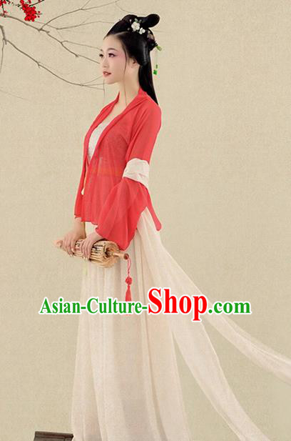 Chinese Traditional Song Dynasty Swordswoman Costumes Ancient Princess Clothing for Women