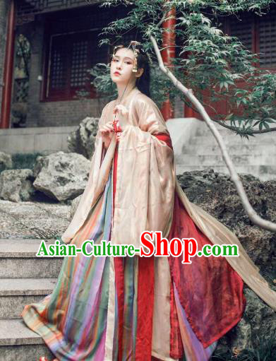 Ancient Traditional China Tang Dynasty Palace Imperial Concubine Embroidered Costumes Complete Set for Women