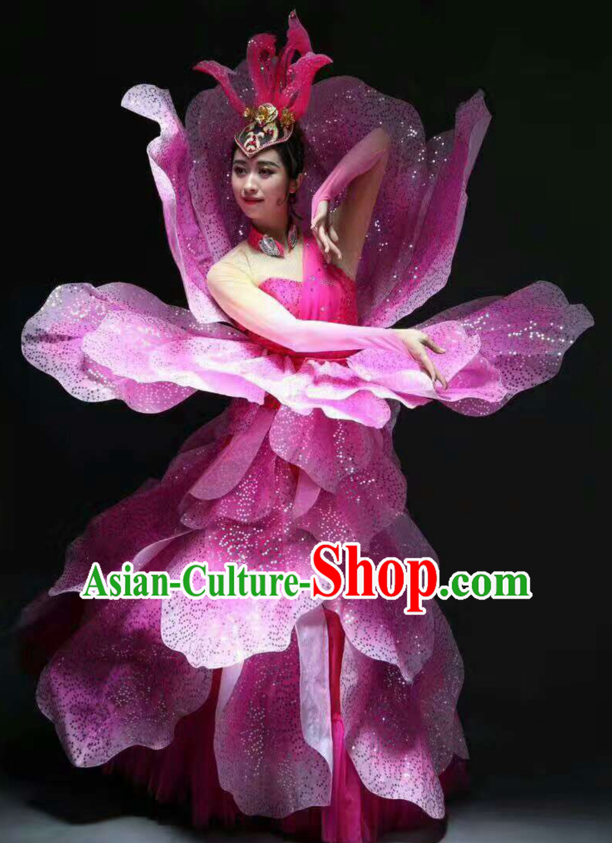 Chinese Classical Flower Dance Costume Dancing Costumes and Headpieces Complete Set for Women